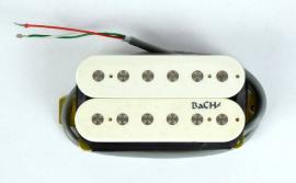 BaCH-101 krk